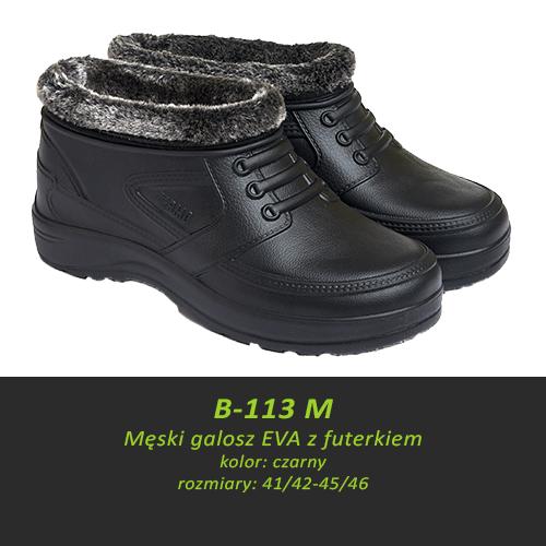 B-113 M